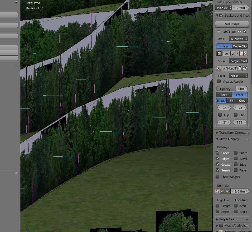 tree_wall_3_vertex_per_face.JPG